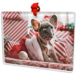 Thumbnail for Rectangular Acrylic Ornament with Full Photo design 2
